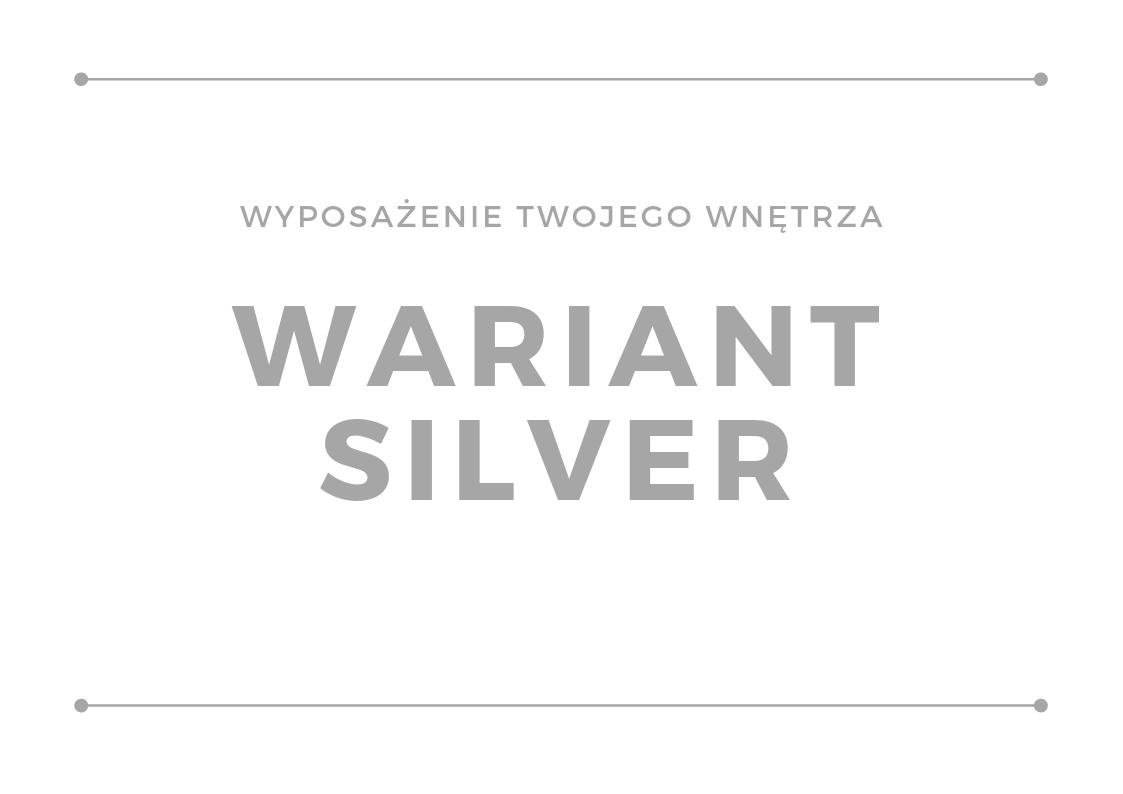 Wyposażenie wnętrza - wariant silver
